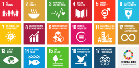 Sustainable Development Goals Teach in