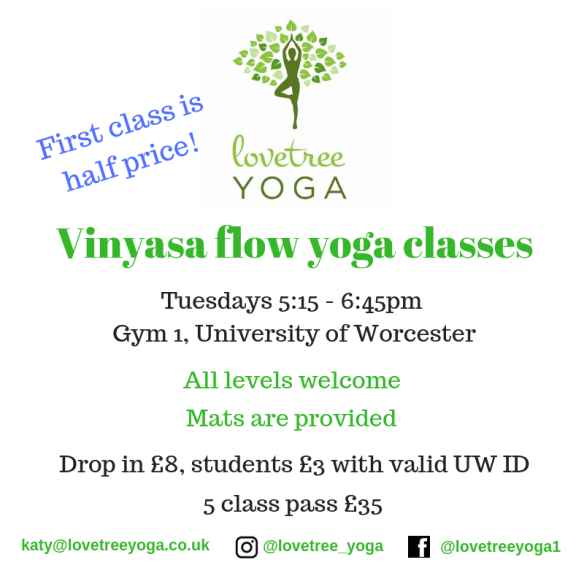 Copy of Vinyasa flow classes (1)